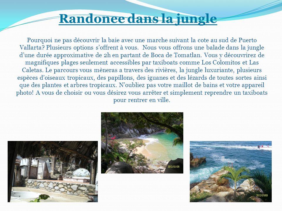 Randonee dans la jungle Pourquoi ne pas découvrir la baie avec une marche suivant la cote au sud de Puerto Vallarta? Plusieurs options soffrent à vous