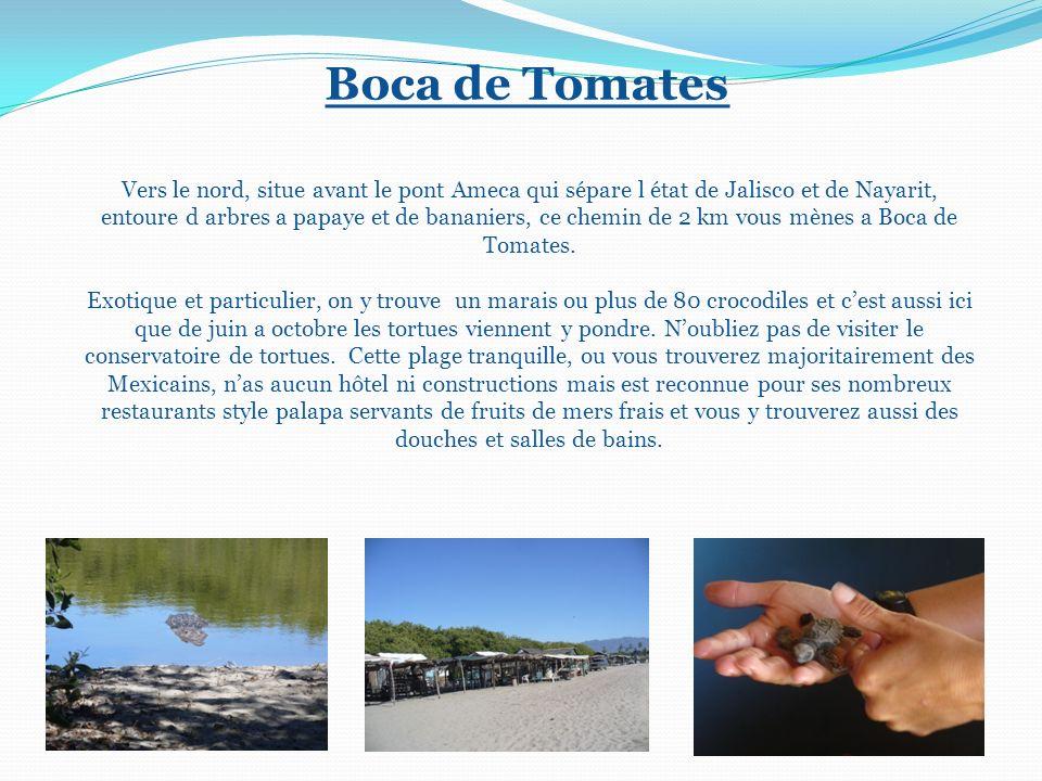 Boca de Tomates Vers le nord, situe avant le pont Ameca qui sépare l état de Jalisco et de Nayarit, entoure d arbres a papaye et de bananiers, ce chemin de 2 km vous mènes a Boca de Tomates.