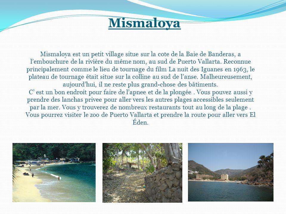 Mismaloya Mismaloya est un petit village situe sur la cote de la Baie de Banderas, a lembouchure de la rivière du même nom, au sud de Puerto Vallarta.
