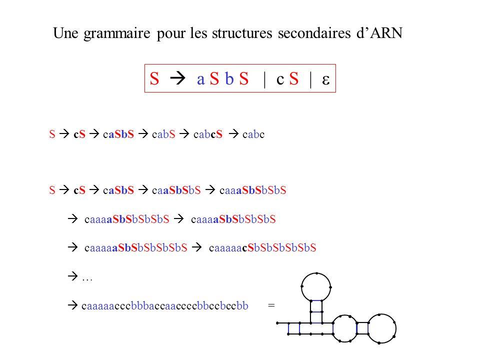 Une grammaire pour les structures secondaires dARN S a S b S | c S | S cS caSbS caaSbSbS caaaSbSbSbS caaaaSbSbSbSbS caaaaSbSbSbSbS caaaaaSbSbSbSbSbS c