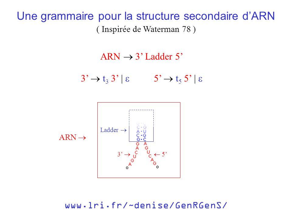 www.lri.fr/~denise/GenRGenS/ ARN 3 Ladder 5 3 t 3 3 | 5 t 5 5 | 3 5 Ladder ARN Une grammaire pour la structure secondaire dARN ( Inspirée de Waterman