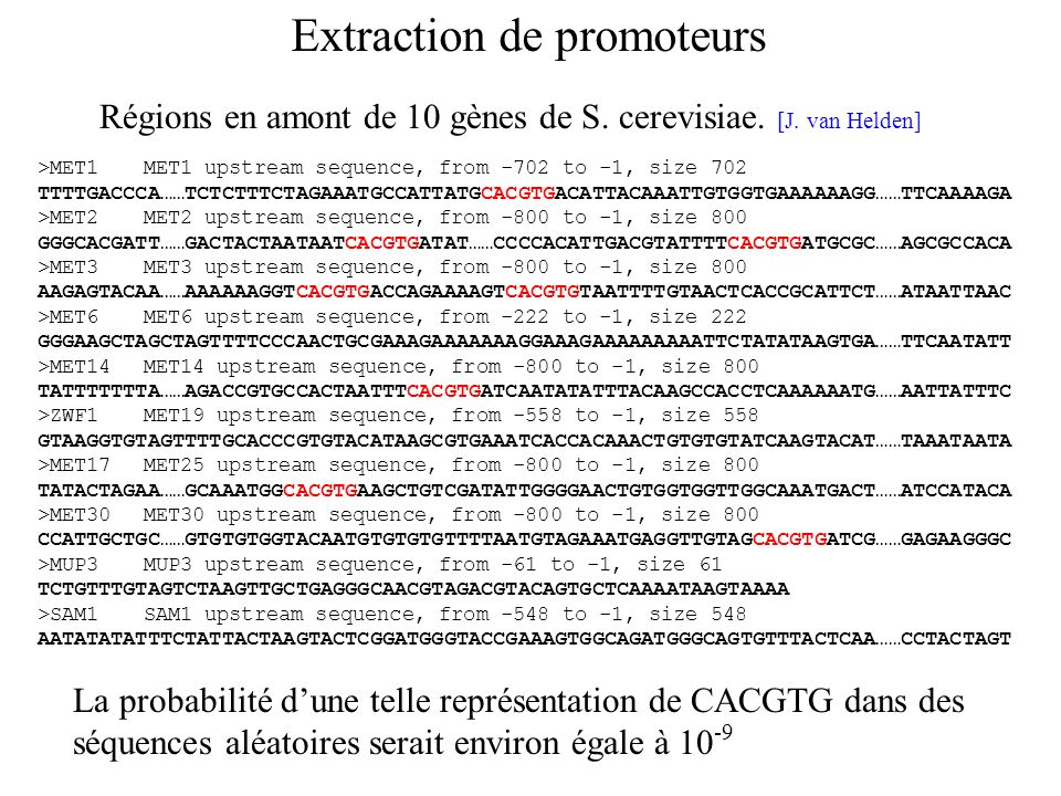 >MET1MET1 upstream sequence, from -702 to -1, size 702 TTTTGACCCA……TCTCTTTCTAGAAATGCCATTATGCACGTGACATTACAAATTGTGGTGAAAAAAGG……TTCAAAAGA >MET2MET2 upstr
