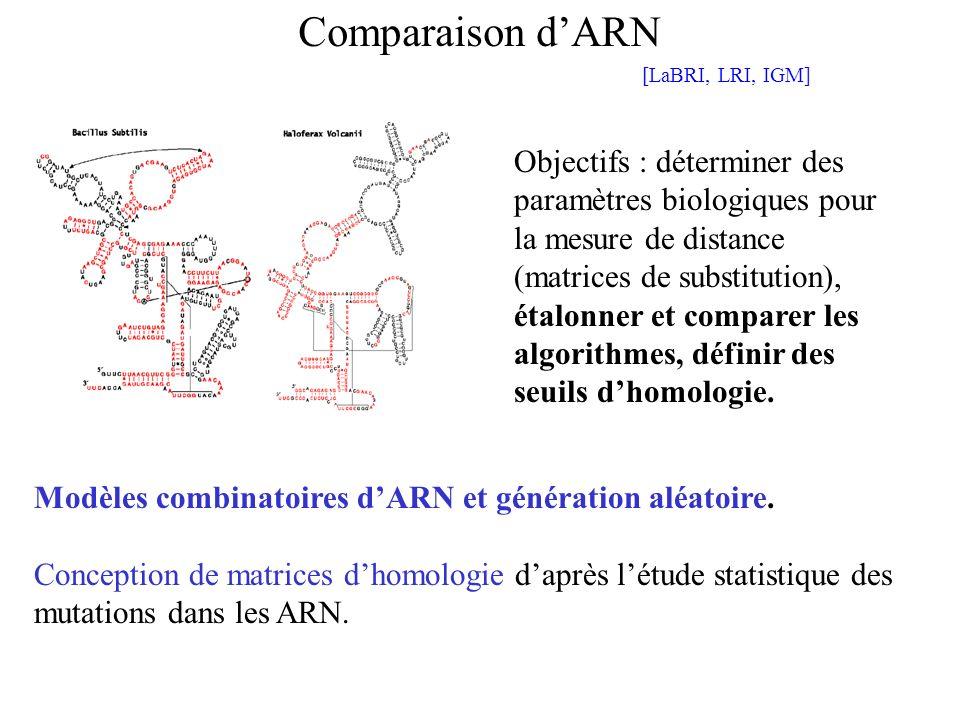 Objectifs : déterminer des paramètres biologiques pour la mesure de distance (matrices de substitution), étalonner et comparer les algorithmes, défini