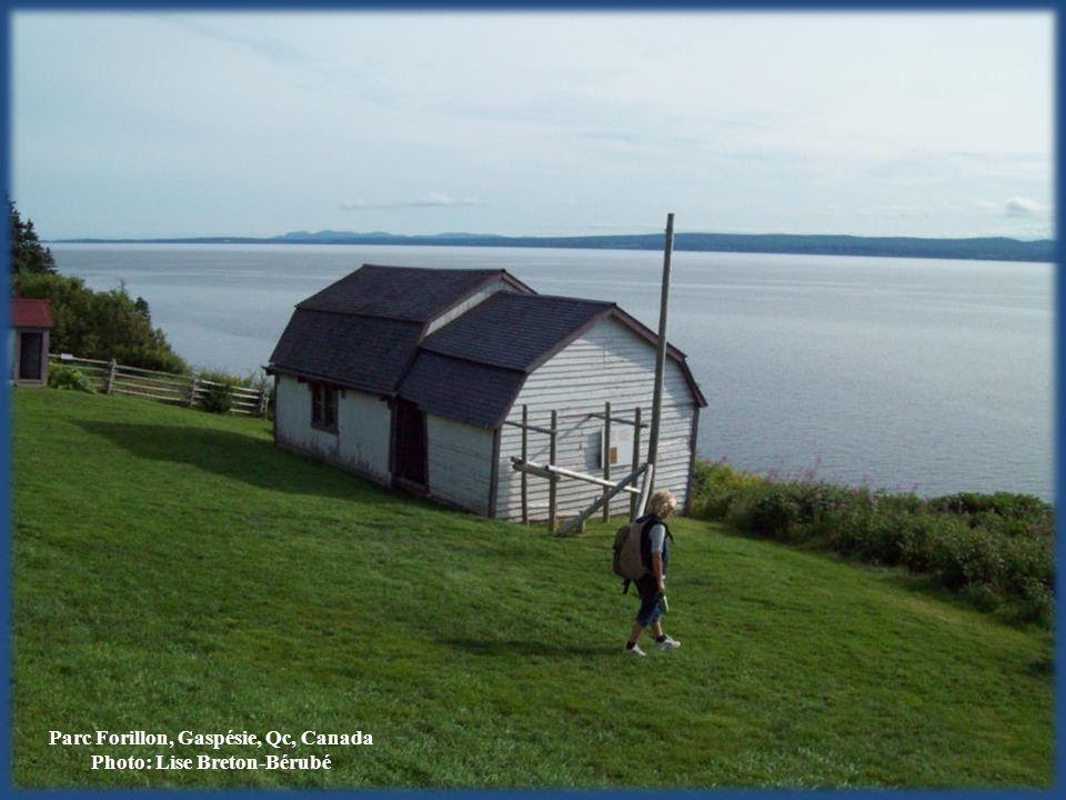 Parc Forillon, Gaspésie, Qc, Canada Photo: Lise Breton-Bérubé