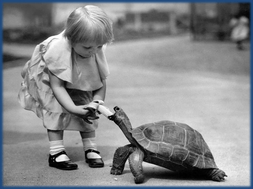 Il n'y a pas d'enthousiasme sans sagesse, ni de sagesse sans générosité. - Eugène Grindel, dit Paul Eluard