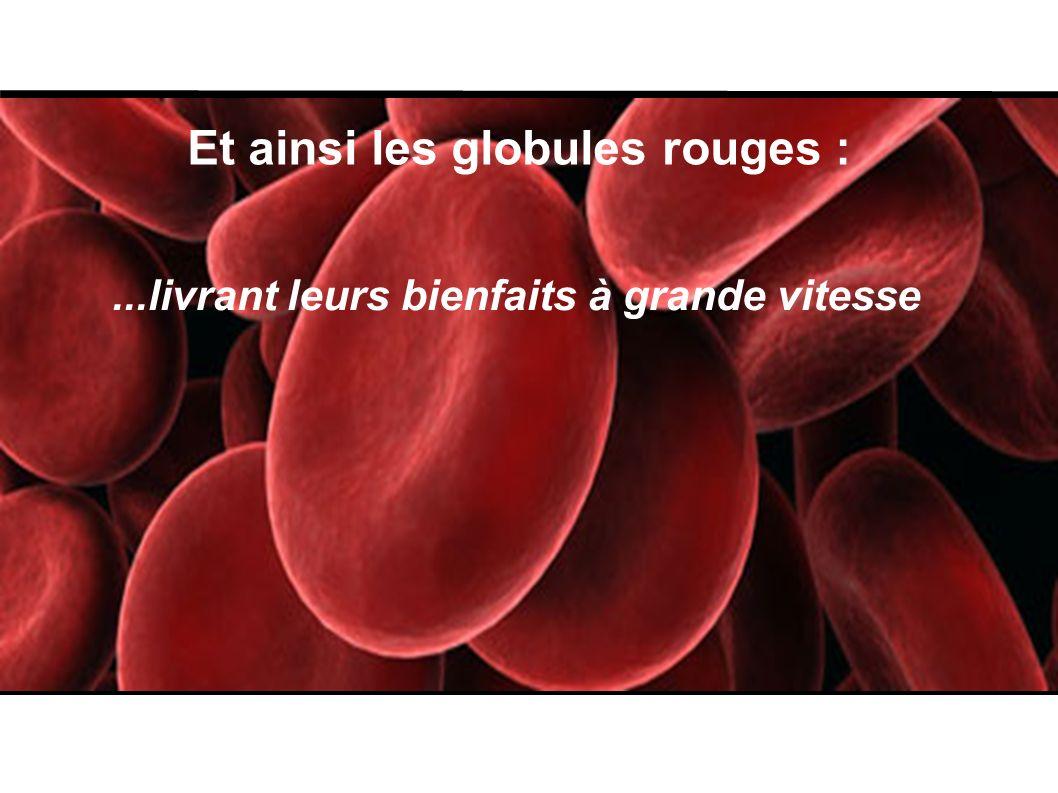Et ainsi les globules rouges :...livrant leurs bienfaits à grande vitesse