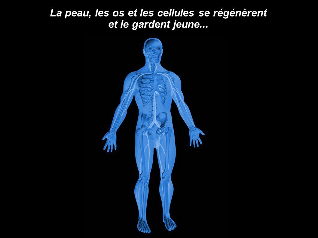 La peau, les os et les cellules se régénèrent et le gardent jeune...