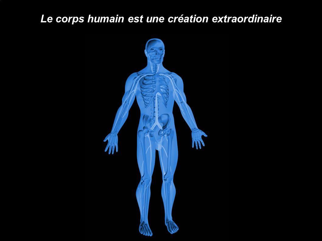 Le corps humain est une création extraordinaire
