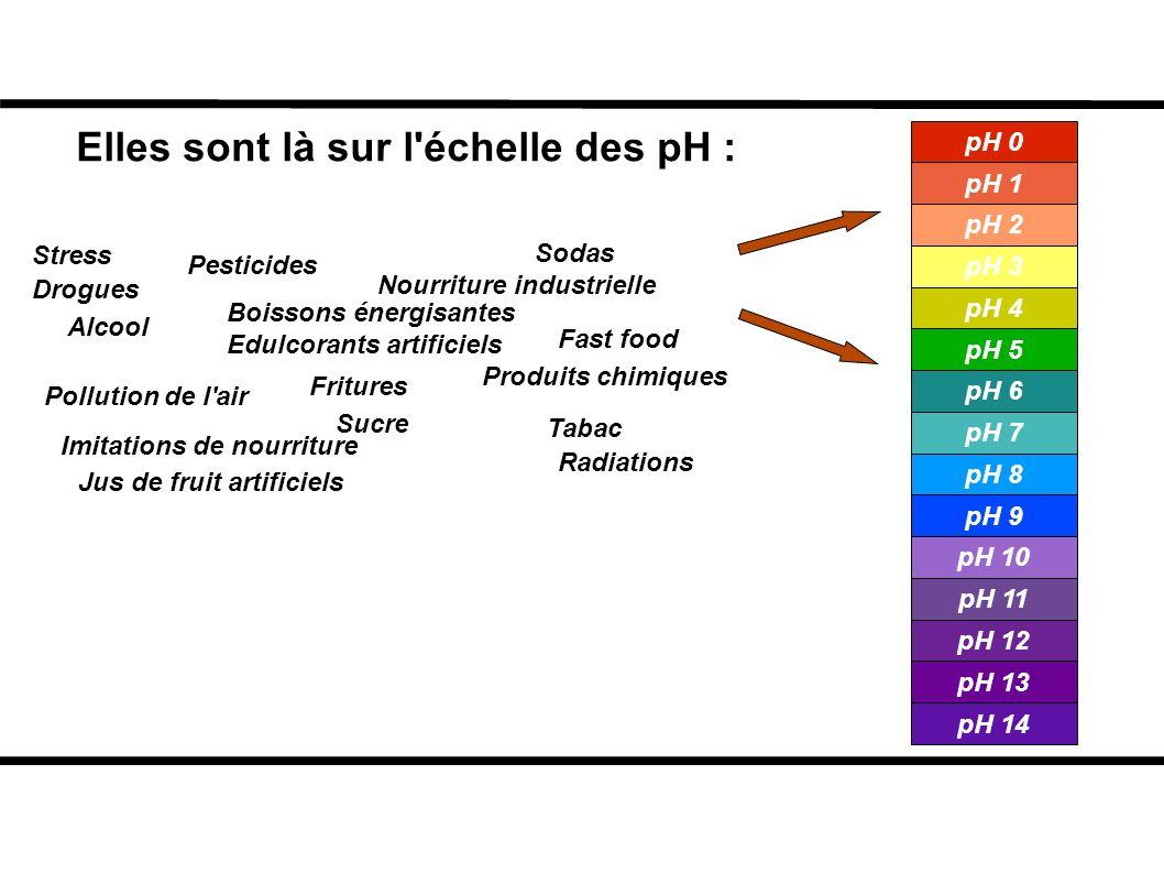Elles sont là sur l'échelle des pH : Pesticides Fast food Alcool Radiations Drogues Stress Produits chimiques Sodas Fritures Edulcorants artificiels B