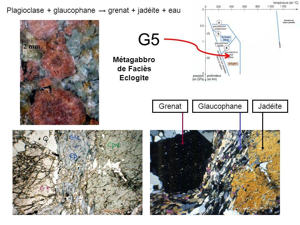 G5 Glaucophane GrenatJadéite Plagioclase + glaucophane grenat + jadéite + eau Métagabbro de Faciès Eclogite