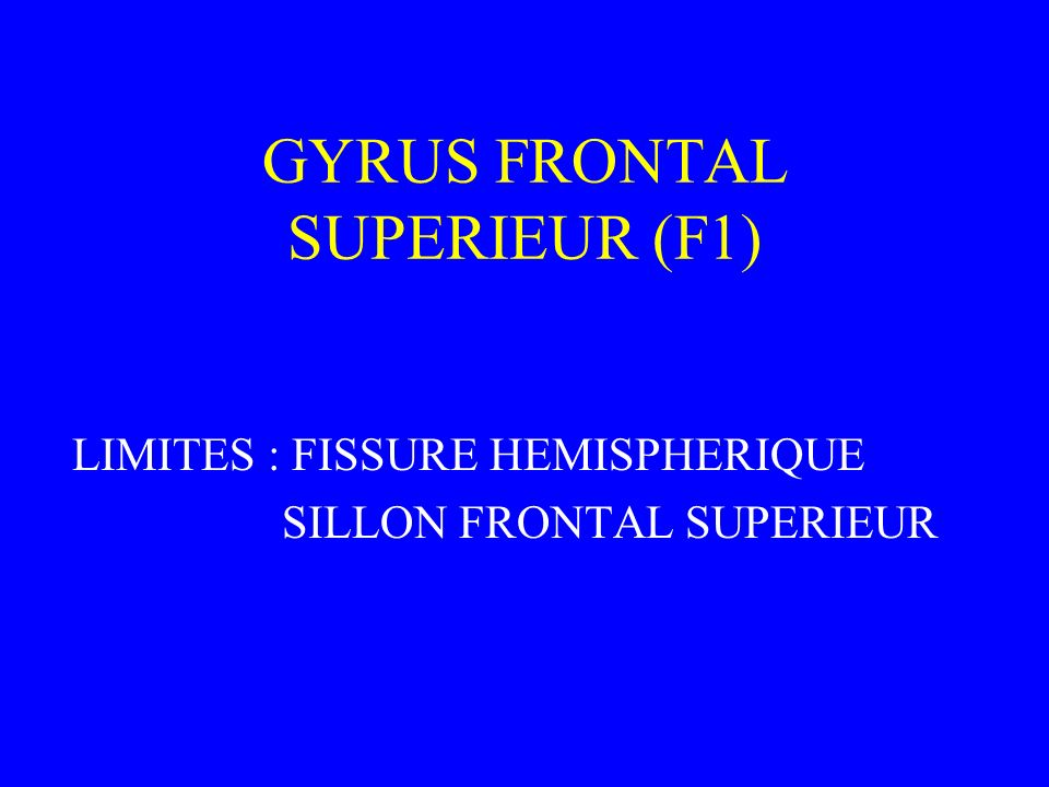 GYRUS FRONTAL SUPERIEUR (F1) LIMITES : FISSURE HEMISPHERIQUE SILLON FRONTAL SUPERIEUR