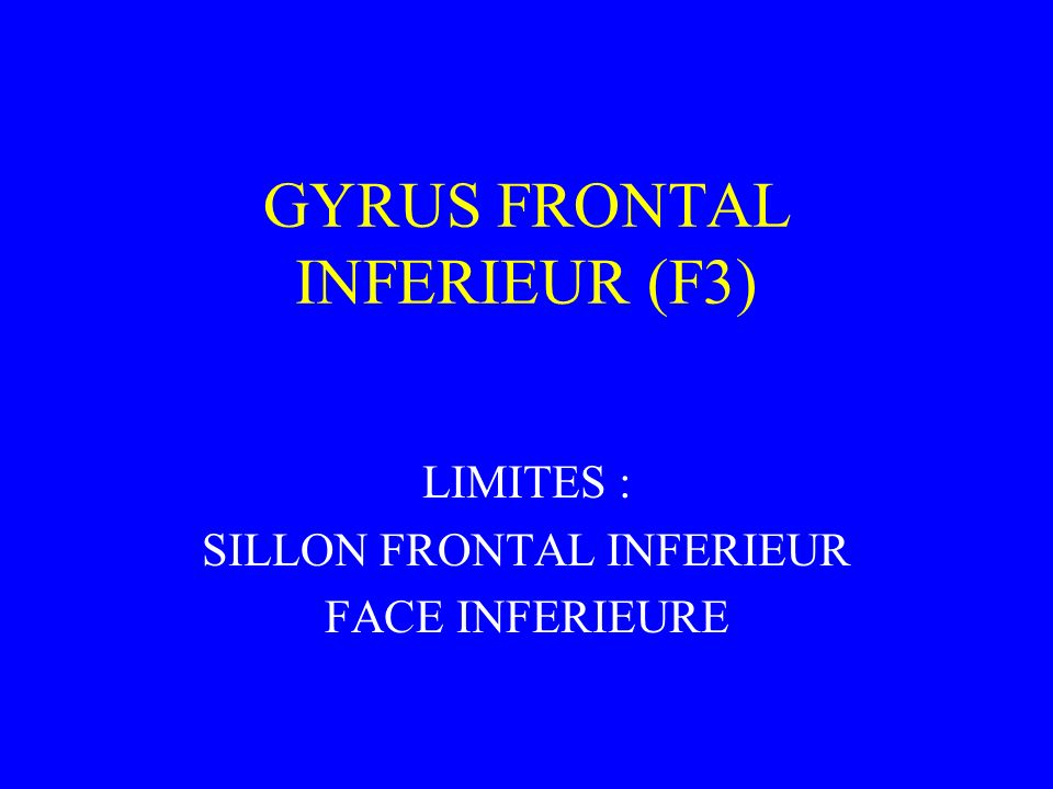 GYRUS FRONTAL INFERIEUR (F3) LIMITES : SILLON FRONTAL INFERIEUR FACE INFERIEURE