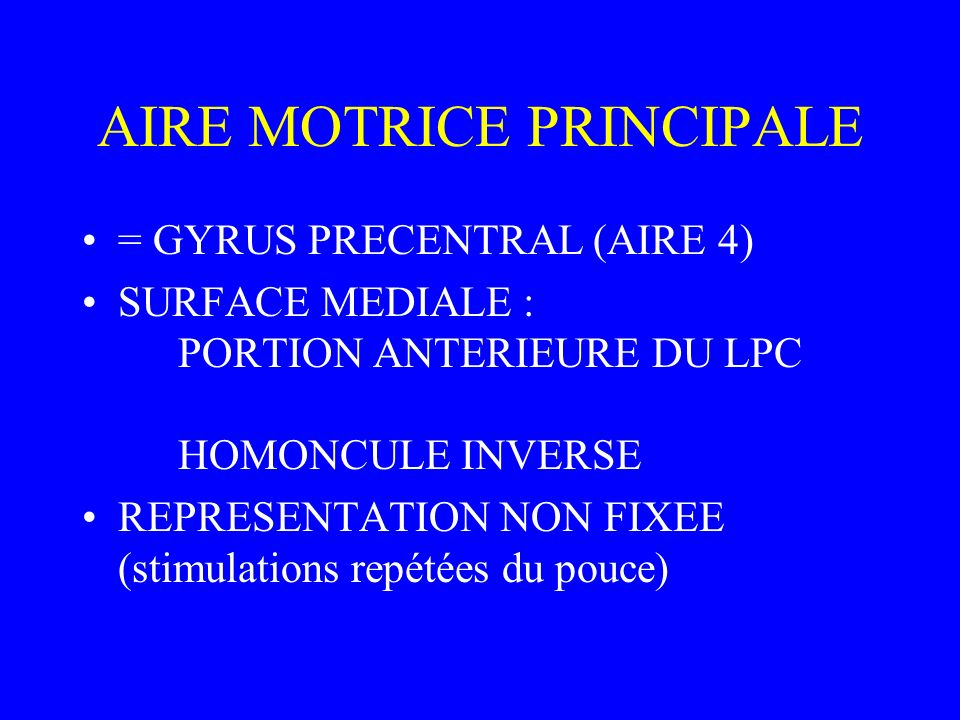 AIRE MOTRICE PRINCIPALE = GYRUS PRECENTRAL (AIRE 4) SURFACE MEDIALE : PORTION ANTERIEURE DU LPC HOMONCULE INVERSE REPRESENTATION NON FIXEE (stimulatio