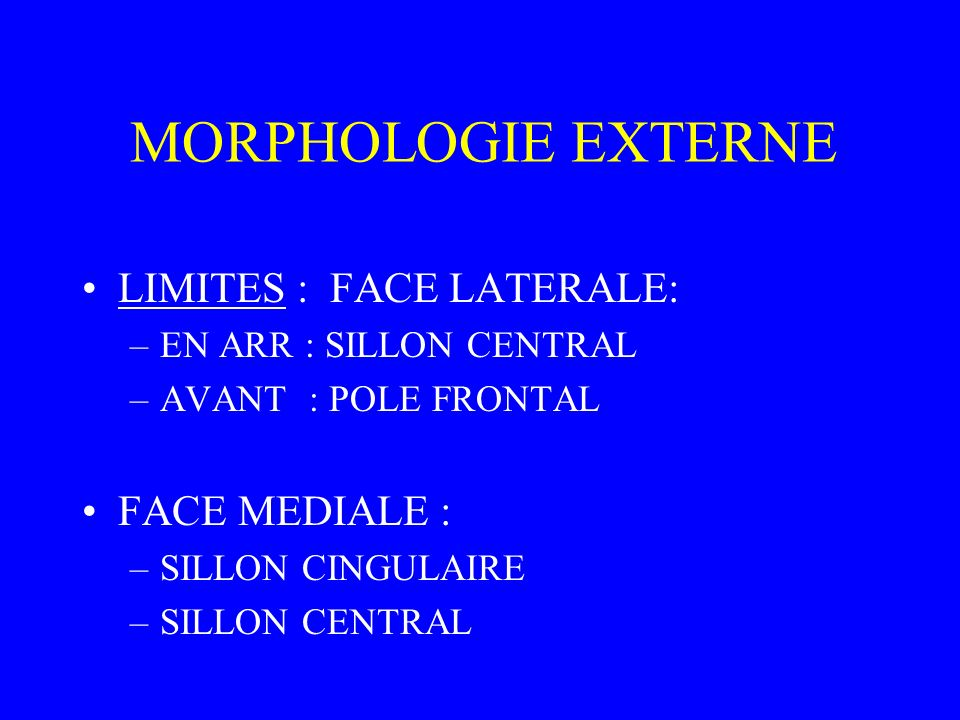 MORPHOLOGIE EXTERNE LIMITES : FACE LATERALE: –EN ARR : SILLON CENTRAL –AVANT : POLE FRONTAL FACE MEDIALE : –SILLON CINGULAIRE –SILLON CENTRAL