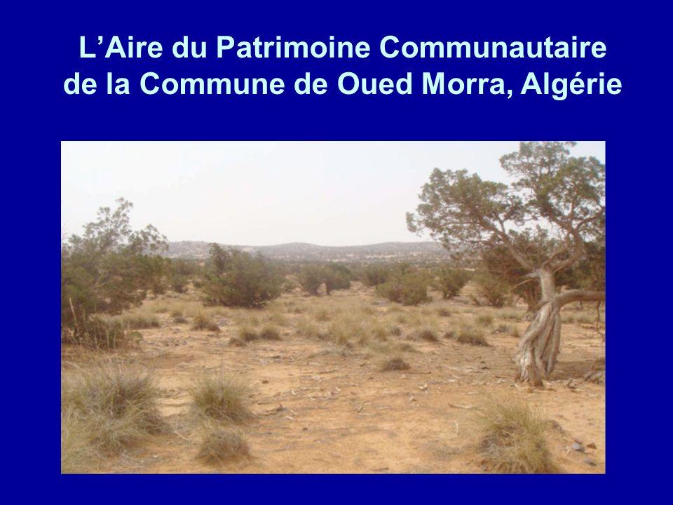 LAire du Patrimoine Communautaire de la Commune de Oued Morra, Algérie