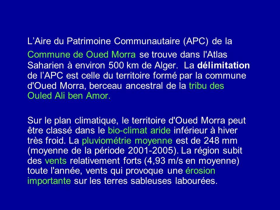 LAire du Patrimoine Communautaire (APC) de la Commune de Oued Morra se trouve dans l'Atlas Saharien à environ 500 km de Alger. La délimitation de lAPC