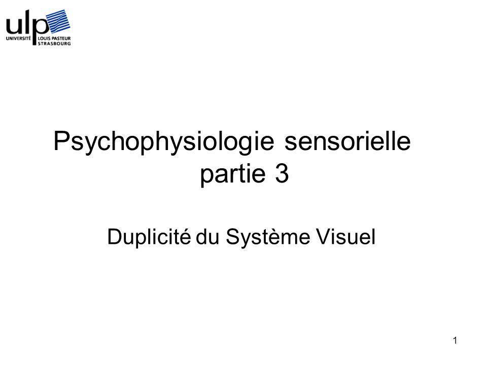 1 Duplicité du Système Visuel Psychophysiologie sensorielle partie 3