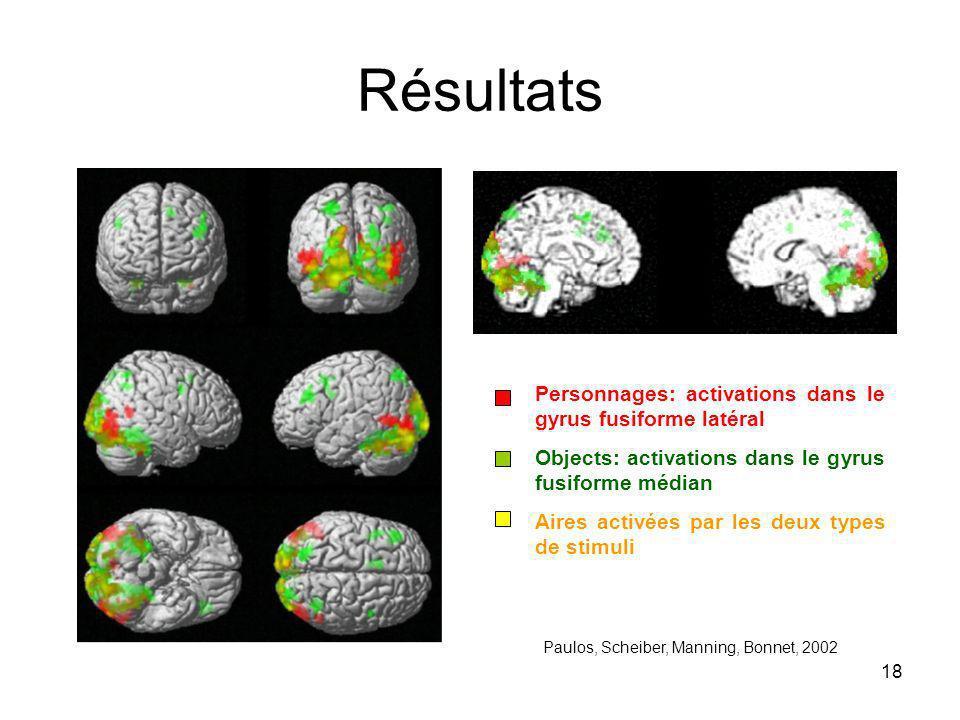 18 Résultats Personnages: activations dans le gyrus fusiforme latéral Objects: activations dans le gyrus fusiforme médian Aires activées par les deux types de stimuli Paulos, Scheiber, Manning, Bonnet, 2002