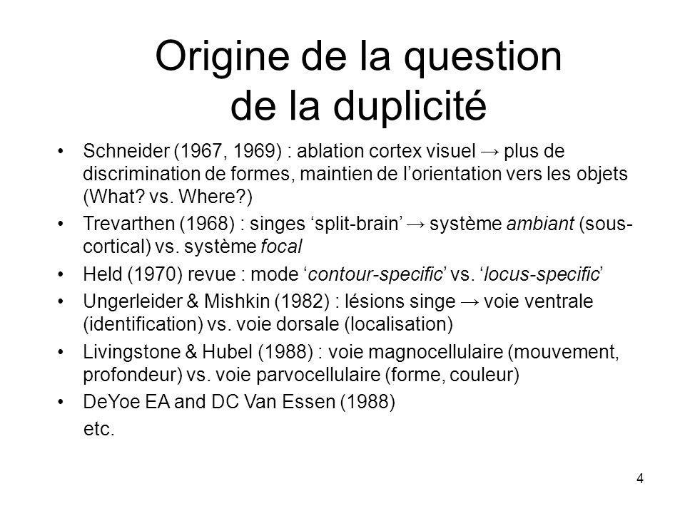 4 Origine de la question de la duplicité Schneider (1967, 1969) : ablation cortex visuel plus de discrimination de formes, maintien de lorientation ve