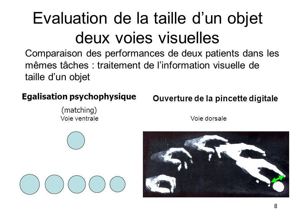 8 Evaluation de la taille dun objet deux voies visuelles Comparaison des performances de deux patients dans les mêmes tâches : traitement de linformation visuelle de taille dun objet Egalisation psychophysique (matching) Ouverture de la pincette digitale Voie ventrale Voie dorsale