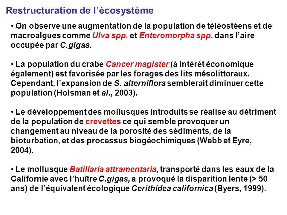 On observe une augmentation de la population de téléostéens et de macroalgues comme Ulva spp.