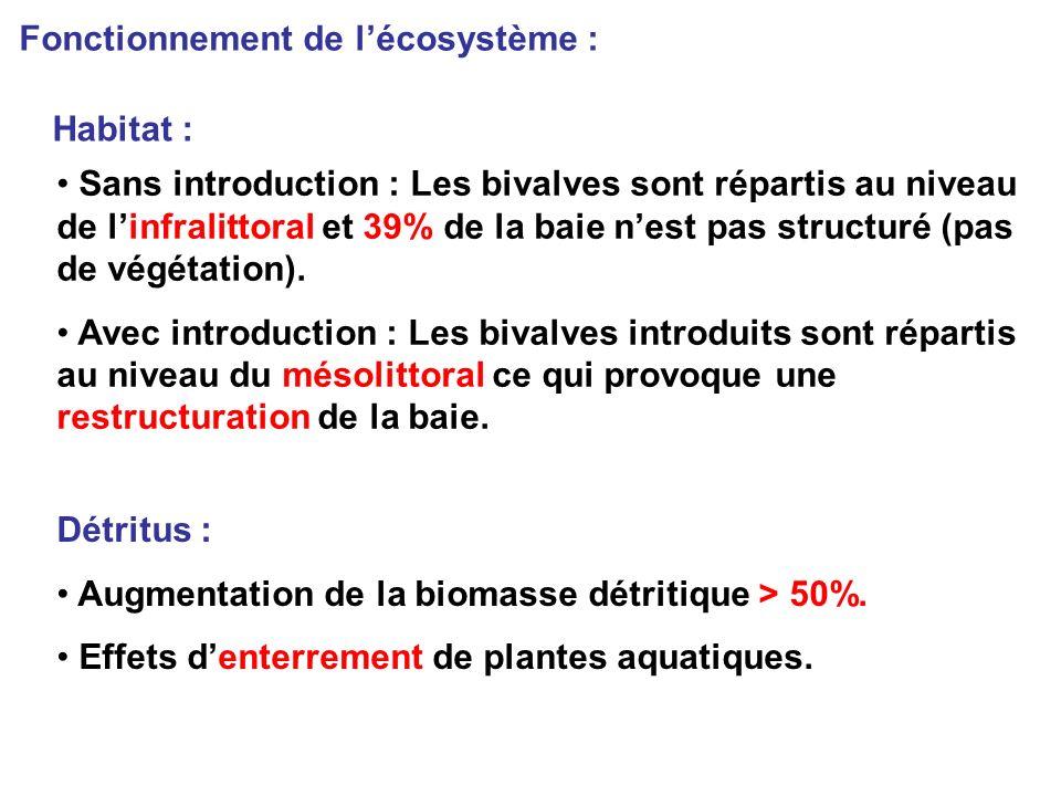 Sans introduction : Les bivalves sont répartis au niveau de linfralittoral et 39% de la baie nest pas structuré (pas de végétation).