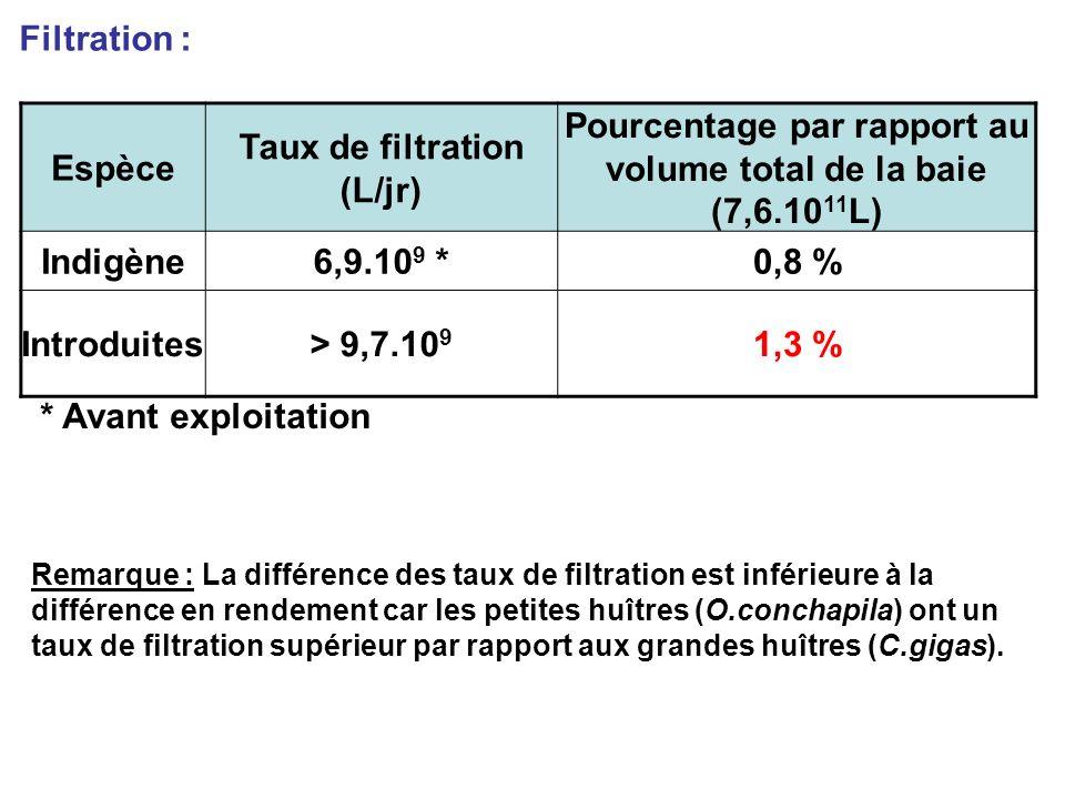 Filtration : Espèce Taux de filtration (L/jr) Pourcentage par rapport au volume total de la baie (7,6.10 11 L) Indigène6,9.10 9 *0,8 % Introduites> 9,7.10 9 1,3 % * Avant exploitation Remarque : La différence des taux de filtration est inférieure à la différence en rendement car les petites huîtres (O.conchapila) ont un taux de filtration supérieur par rapport aux grandes huîtres (C.gigas).