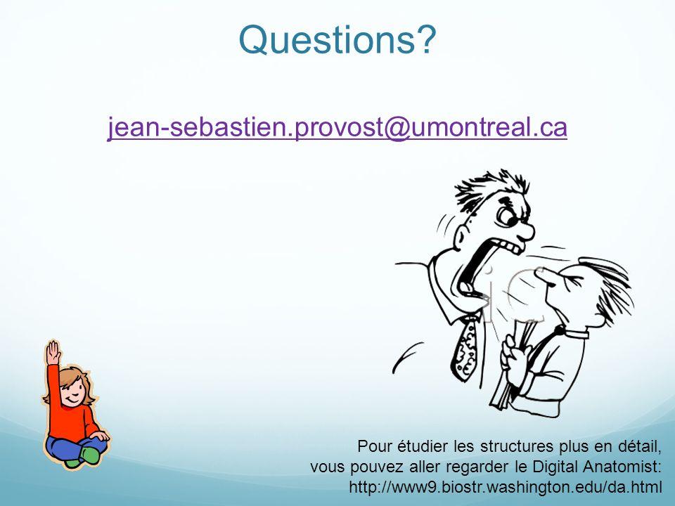 Questions? jean-sebastien.provost@umontreal.ca jean-sebastien.provost@umontreal.ca Pour étudier les structures plus en détail, vous pouvez aller regar