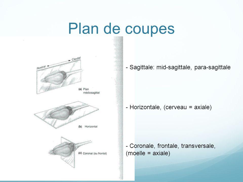- Sagittale: mid-sagittale, para-sagittale - Coronale, frontale, transversale, (moelle = axiale) - Horizontale, (cerveau = axiale) Plan de coupes