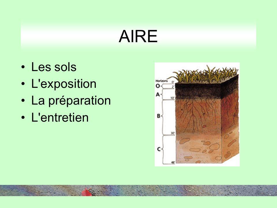 Les sols L'exposition La préparation L'entretien