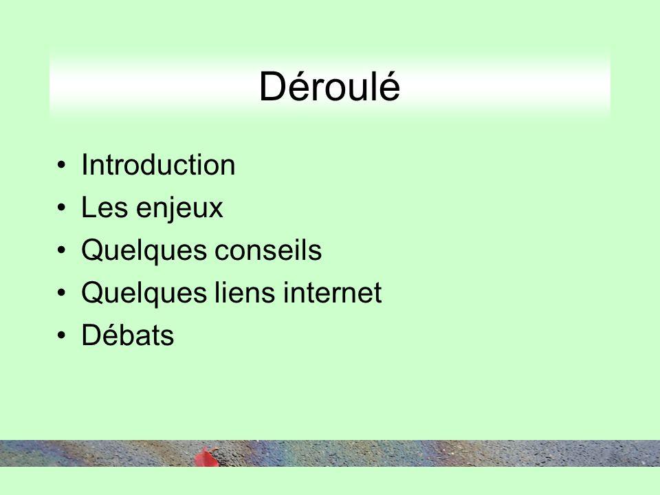 Déroulé Introduction Les enjeux Quelques conseils Quelques liens internet Débats