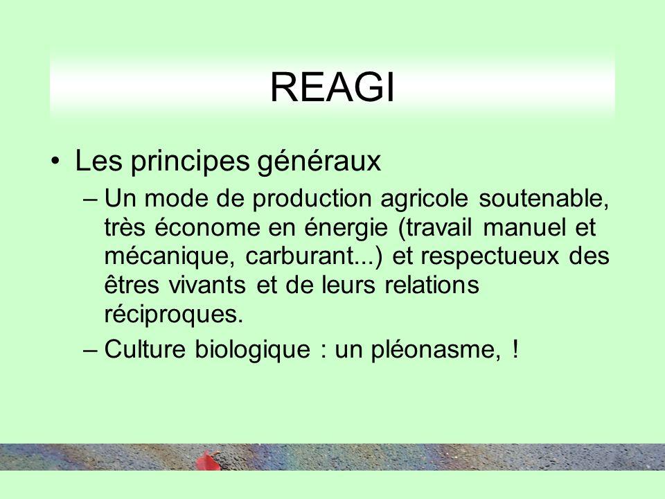 REAGI Les principes généraux –Un mode de production agricole soutenable, très économe en énergie (travail manuel et mécanique, carburant...) et respectueux des êtres vivants et de leurs relations réciproques.