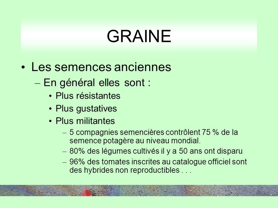 GRAINE Les semences anciennes – En général elles sont : Plus résistantes Plus gustatives Plus militantes – 5 compagnies semencières contrôlent 75 % de la semence potagère au niveau mondial.