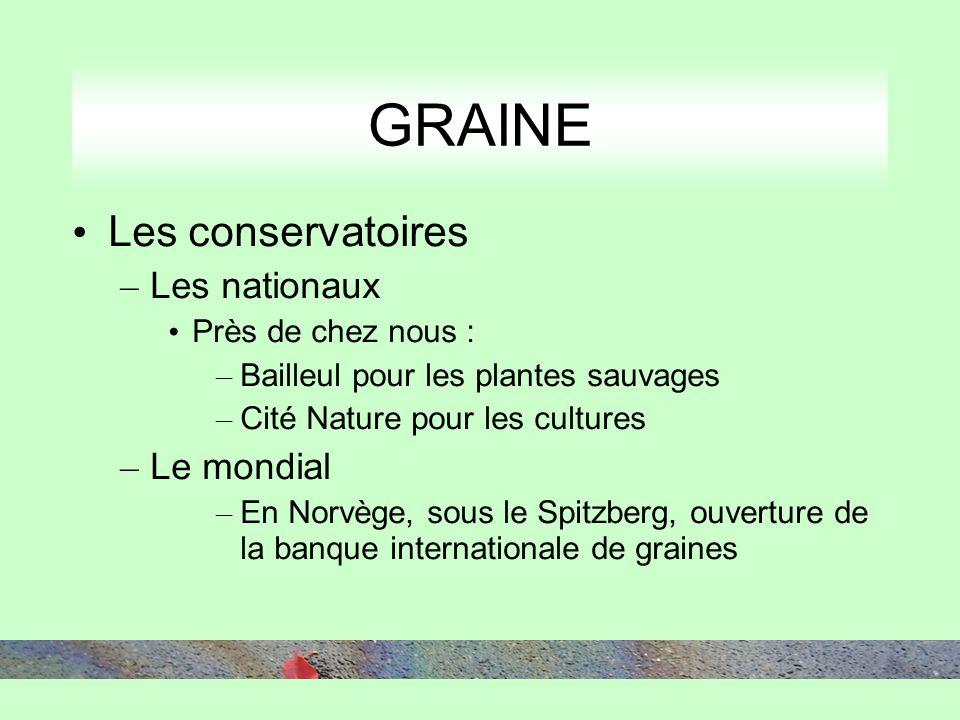 GRAINE Les conservatoires – Les nationaux Près de chez nous : – Bailleul pour les plantes sauvages – Cité Nature pour les cultures – Le mondial – En N
