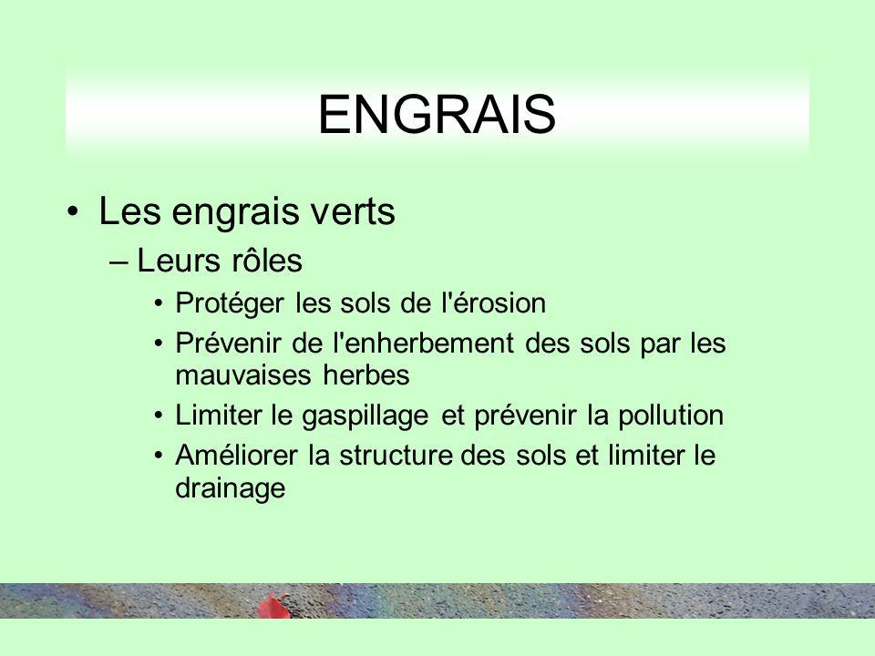 ENGRAIS Les engrais verts –Leurs rôles Protéger les sols de l érosion Prévenir de l enherbement des sols par les mauvaises herbes Limiter le gaspillage et prévenir la pollution Améliorer la structure des sols et limiter le drainage