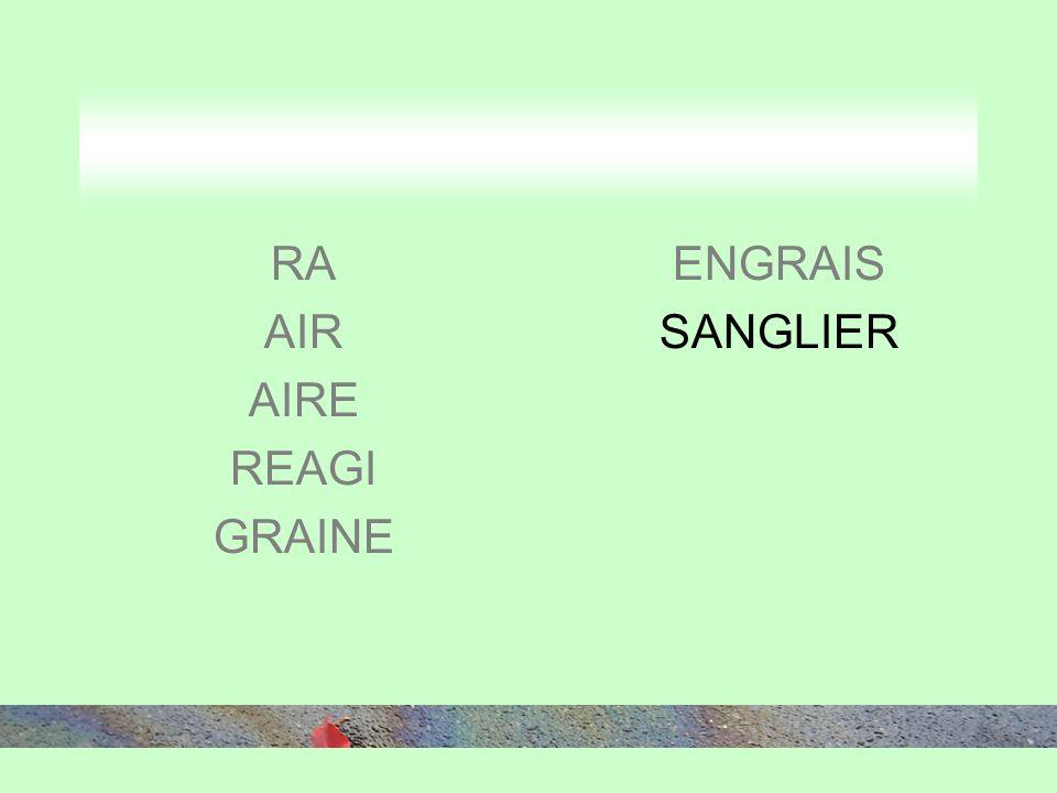 RA AIR AIRE REAGI GRAINE ENGRAIS SANGLIER