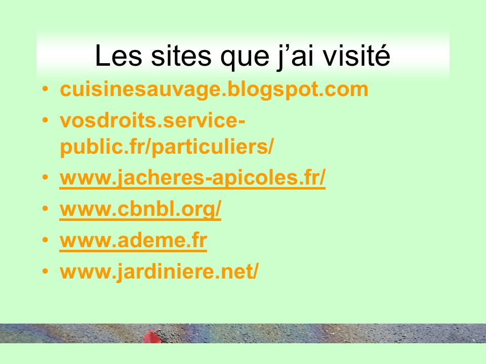 Les sites que jai visité cuisinesauvage.blogspot.com vosdroits.service- public.fr/particuliers/ www.jacheres-apicoles.fr/ www.cbnbl.org/ www.ademe.fr www.jardiniere.net/