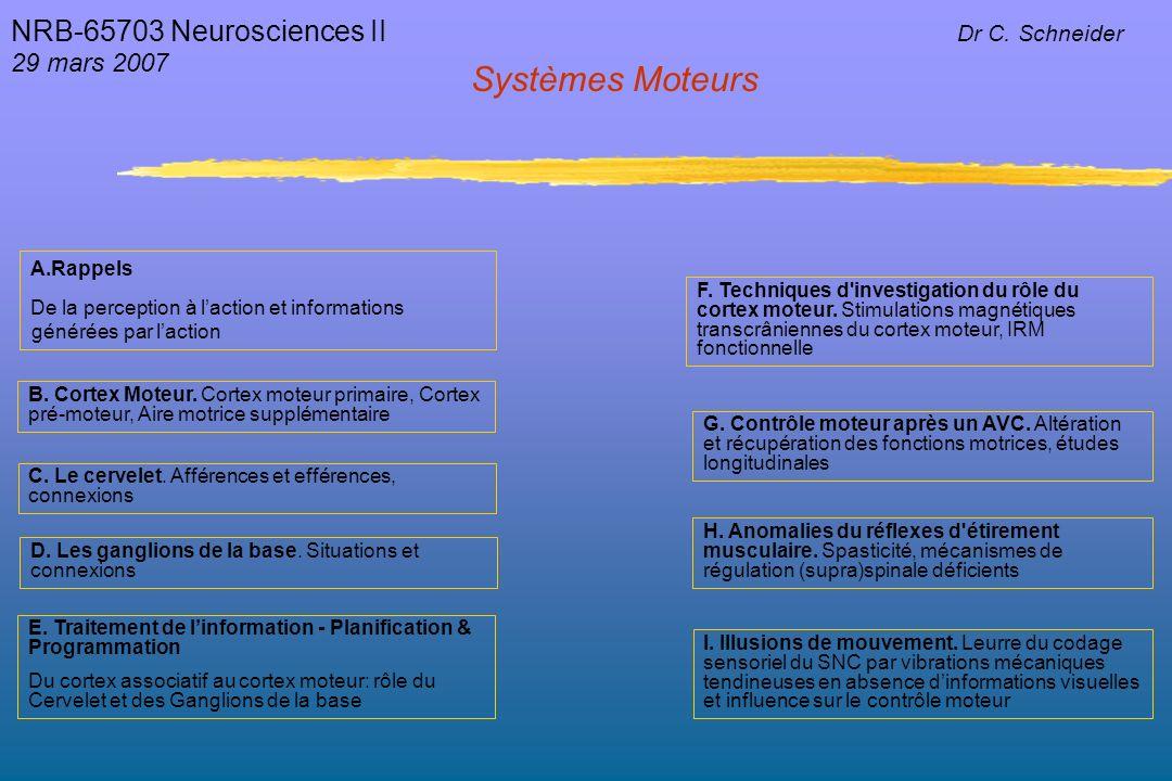 Systèmes Moteurs NRB-65703 Neurosciences II 29 mars 2007 Dr C.