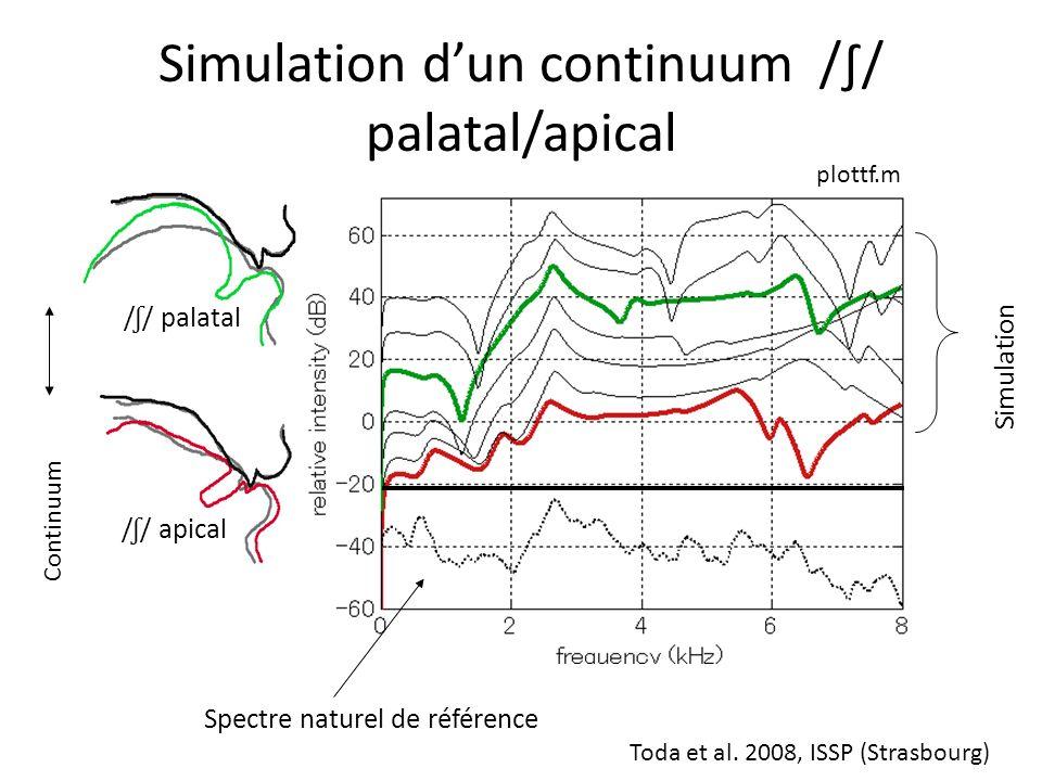 équivalents acoustiques du // malgré des articulations très différentes 12 kHz Cavité sublinguale Chenal palatal (b) [ʃ] [s] Cf. Toda, thèse (2009)