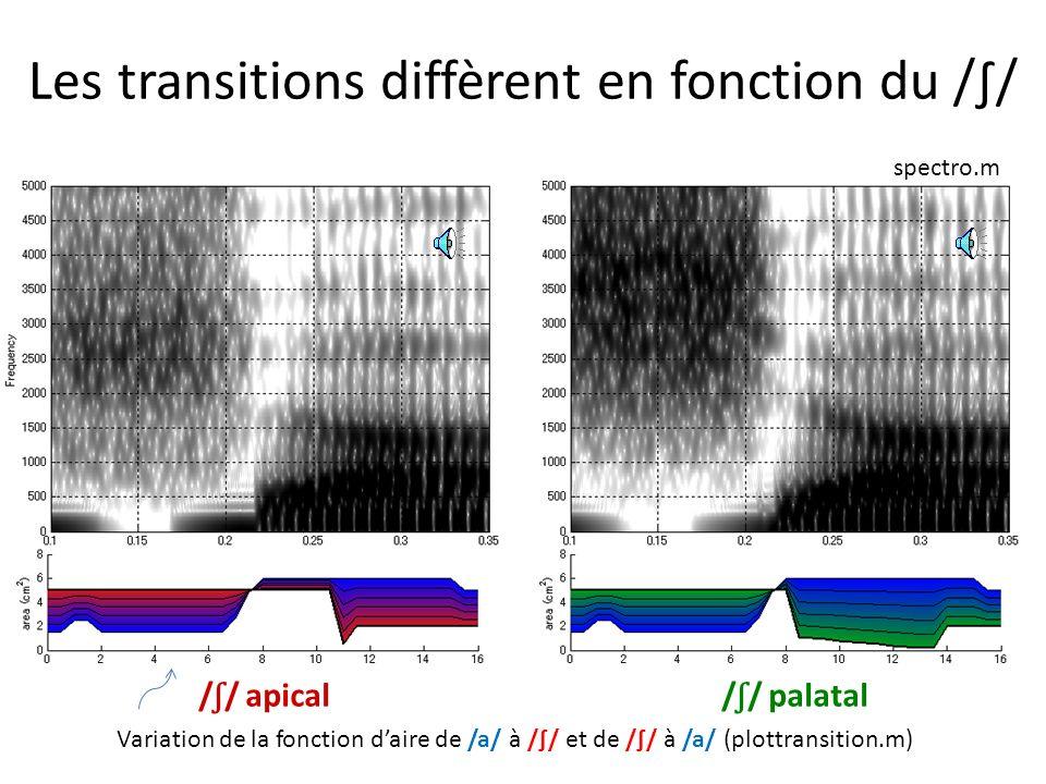 / ʃ / palatal / ʃ / apical Spectre naturel de référence Simulation Continuum Simulation dun continuum // palatal/apical Toda et al. 2008, ISSP (Strasb