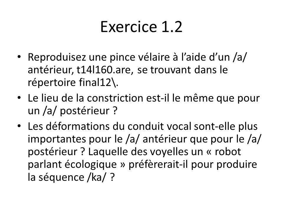 Exercice 1.1 Simulez la « pince vélaire » pour la séquence /ka/, en vous servant de la voyelle /a/ postérieure t9l160.are (dans Final11\) et dun tube