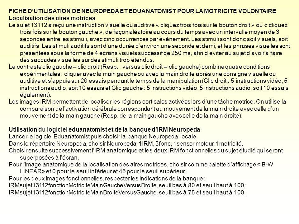 FICHE DUTILISATION DE NEUROPEDA ET EDUANATOMIST POUR LA MOTRICITE VOLONTAIRE Localisation des aires motrices Le sujet 13112 a reçu une instruction vis