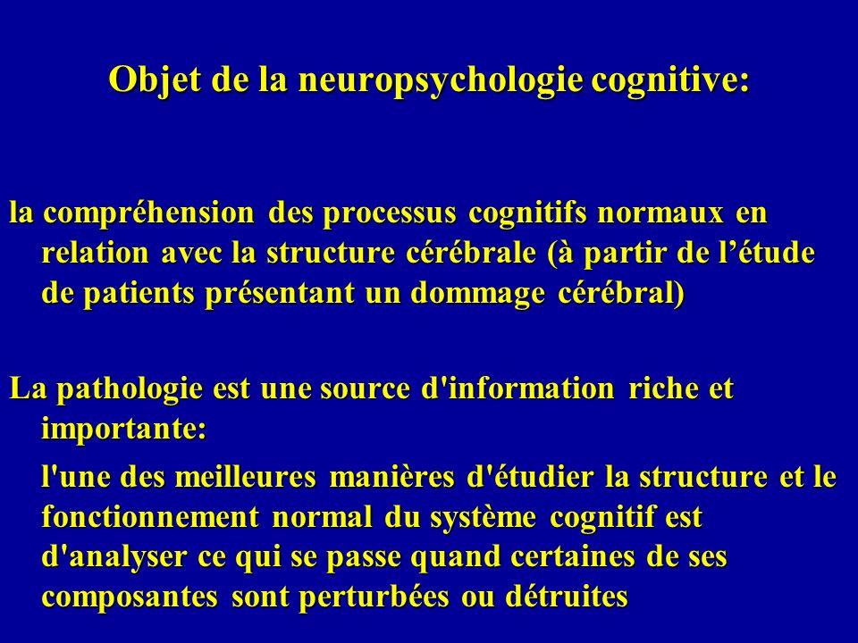 La neuropsychologie cognitive fait partie des neurosciences cognitives qui étudient comment le cerveau (système physique dont lactivité résulte de réactions électrochimiques) est organisé, comment cette organisation permet le traitement de linformation, de manière plus générale comment elle permet lactivité mentale, et comment ce traitement dinformation conduit au comportement