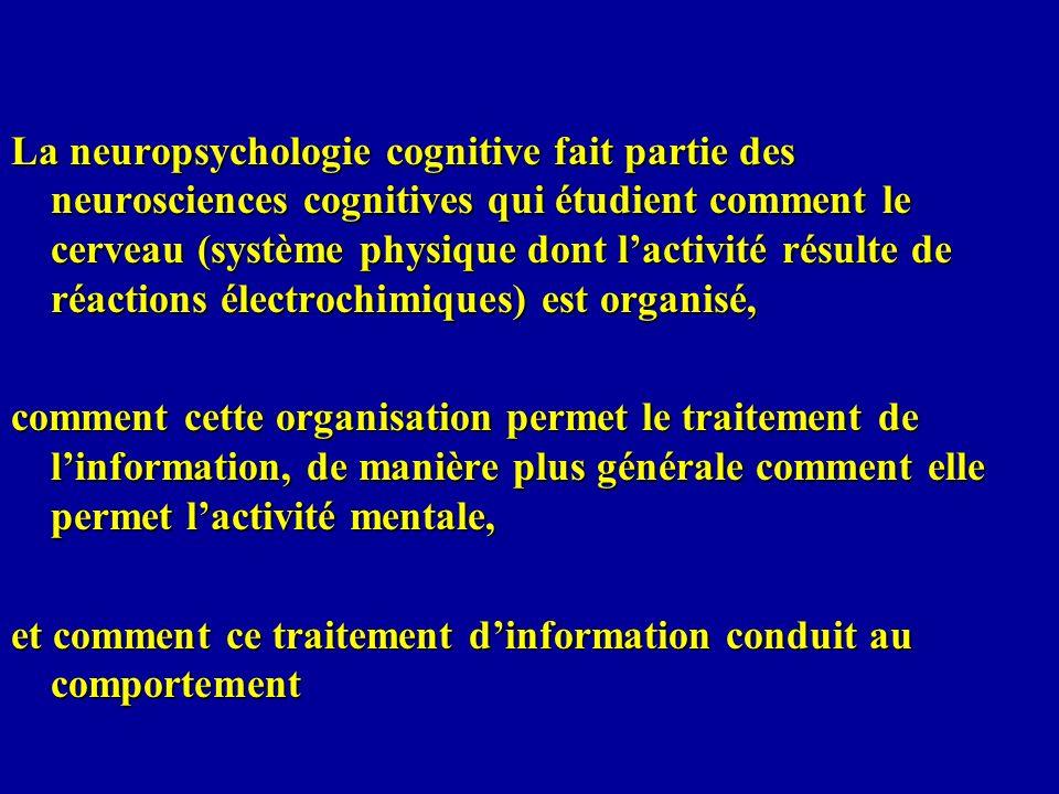La neuropsychologie cognitive fait partie des neurosciences cognitives qui étudient comment le cerveau (système physique dont lactivité résulte de réa