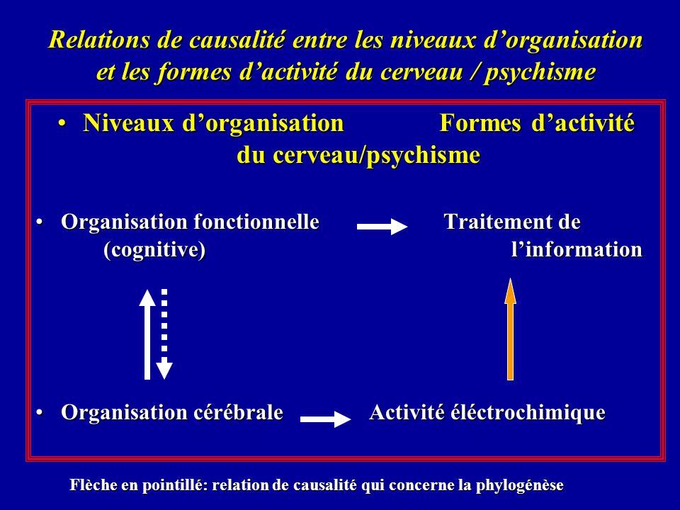 Relations de causalité entre les niveaux dorganisation et les formes dactivité du cerveau / psychisme Niveaux dorganisation Formes dactivité du cervea