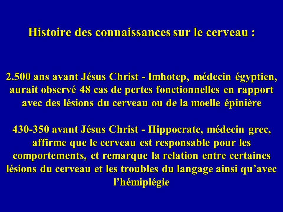 Histoire des connaissances sur le cerveau : 2.500 ans avant Jésus Christ - Imhotep, médecin égyptien, aurait observé 48 cas de pertes fonctionnelles e