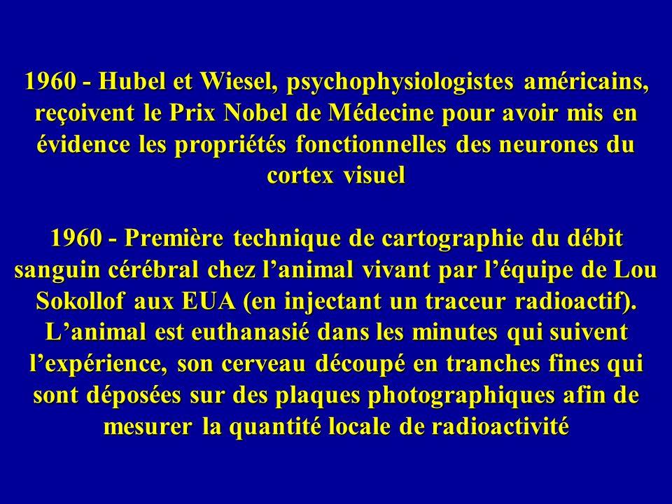 1960 - Hubel et Wiesel, psychophysiologistes américains, reçoivent le Prix Nobel de Médecine pour avoir mis en évidence les propriétés fonctionnelles
