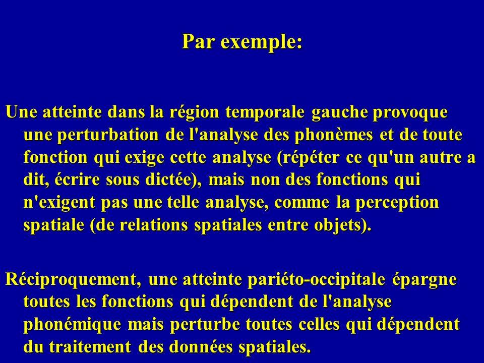 Par exemple: Une atteinte dans la région temporale gauche provoque une perturbation de l'analyse des phonèmes et de toute fonction qui exige cette ana