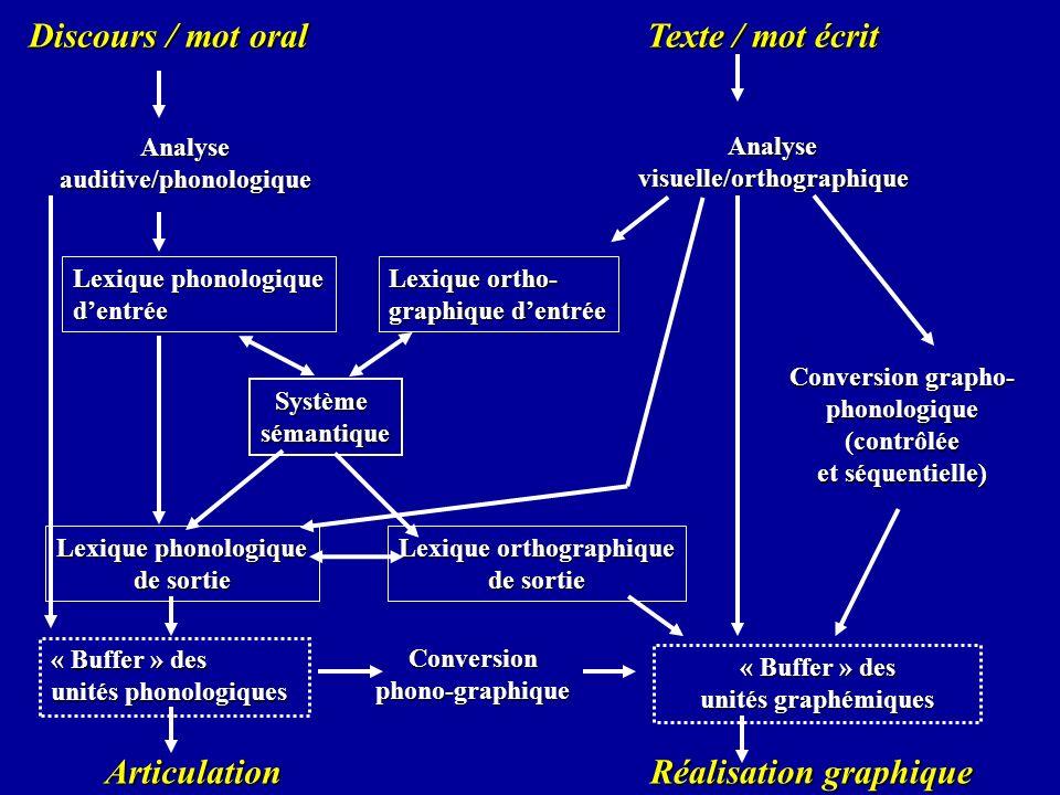 Discours / mot oral Texte / mot écrit Systèmesémantique Conversion grapho- phonologique(contrôlée et séquentielle) Lexique phonologique de sortie Lexi
