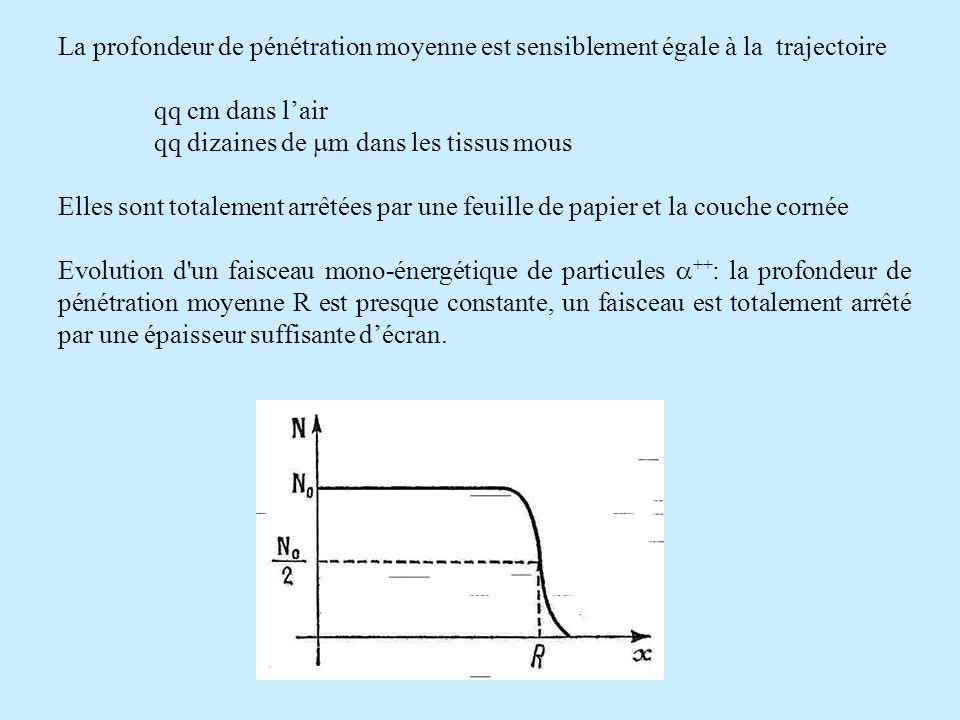 La profondeur de pénétration moyenne est sensiblement égale à la trajectoire qq cm dans lair qq dizaines de m dans les tissus mous Elles sont totalement arrêtées par une feuille de papier et la couche cornée Evolution d un faisceau mono-énergétique de particules ++ : la profondeur de pénétration moyenne R est presque constante, un faisceau est totalement arrêté par une épaisseur suffisante décran.